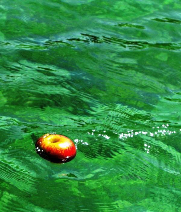 Poma al aigua