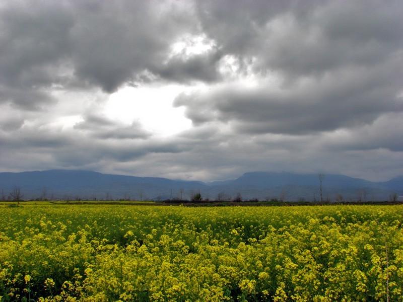 Mazandaran Province Beautiful Landscapes of Mazandaran Province