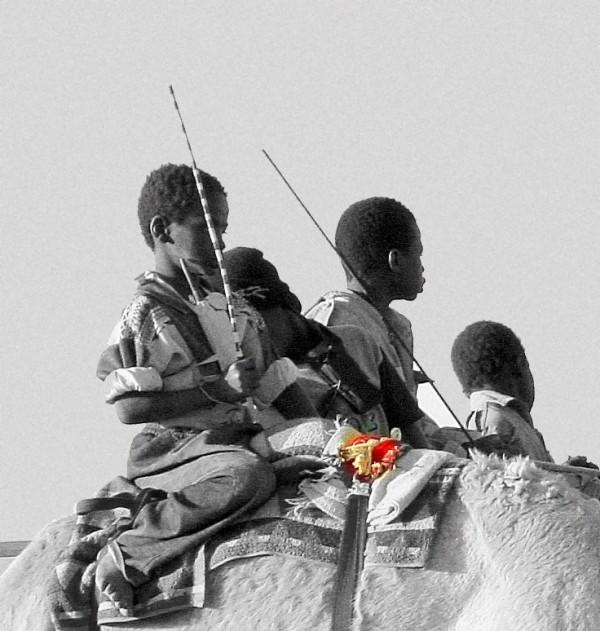 Camel jockeys