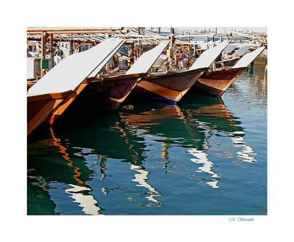Bows of dhows
