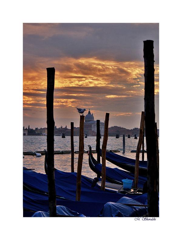 Early evening Venice