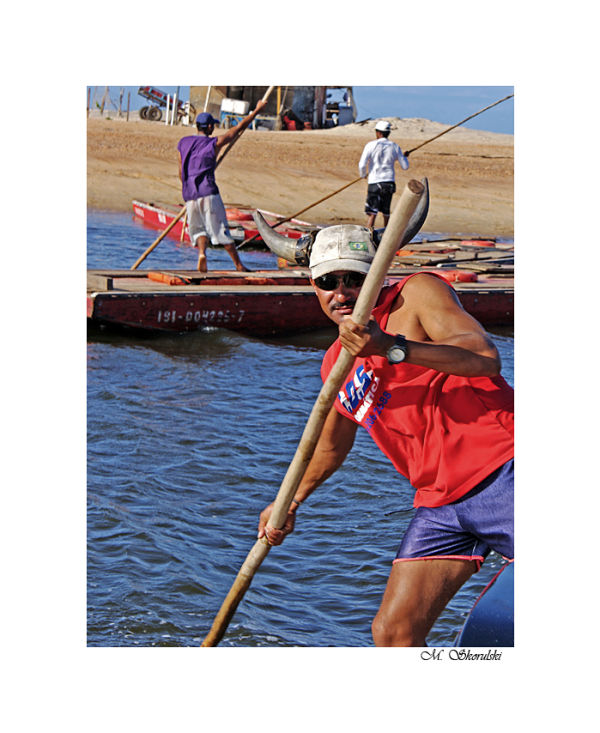 Horned raftsman