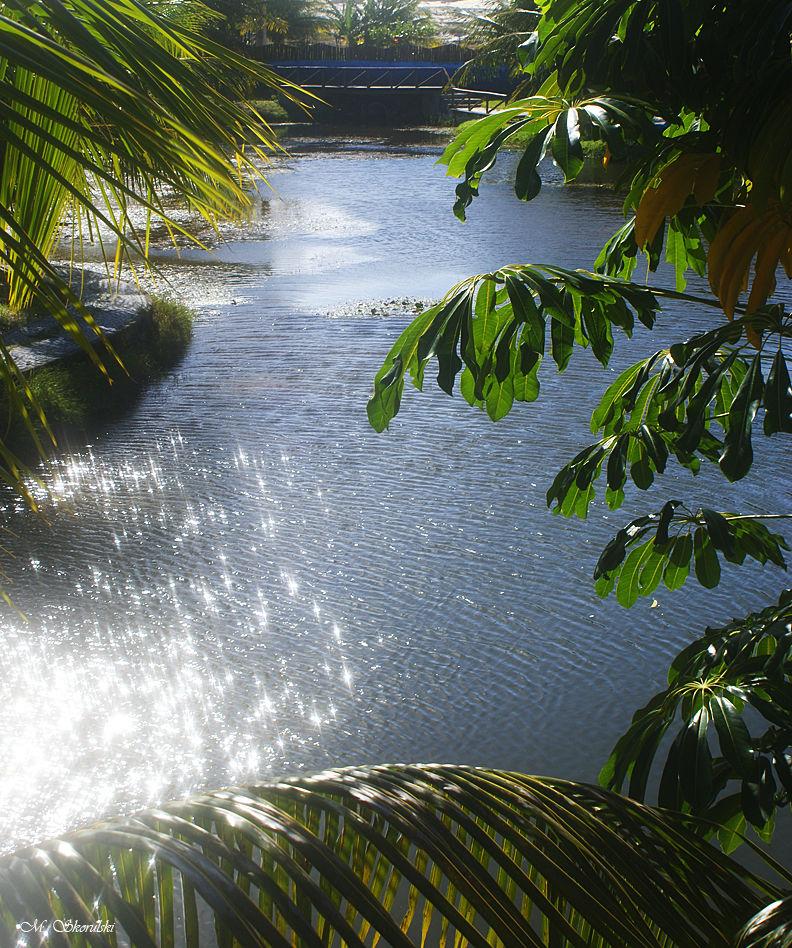 Sparkling pool in Maracajau, Brazil