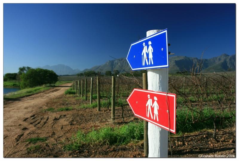 Eikendal stellenbosch hiking