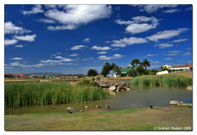 duck park