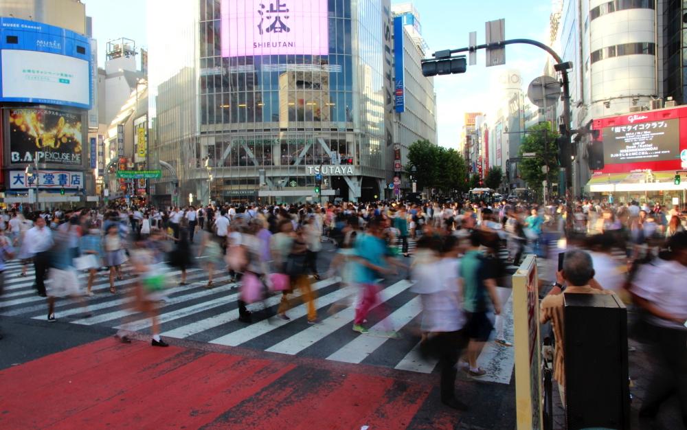 Shibuya Xing