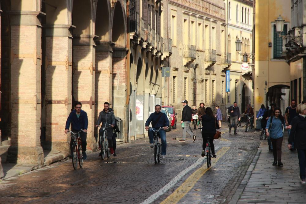 Padua: bikes