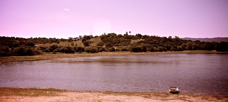 Lake Lagunita (at Stanford)
