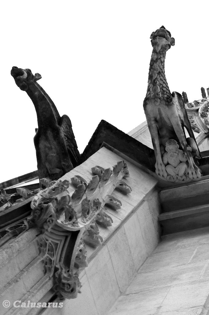 Rouen architecture Gargouille N&B