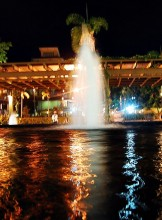 Water Fountain at Serendra