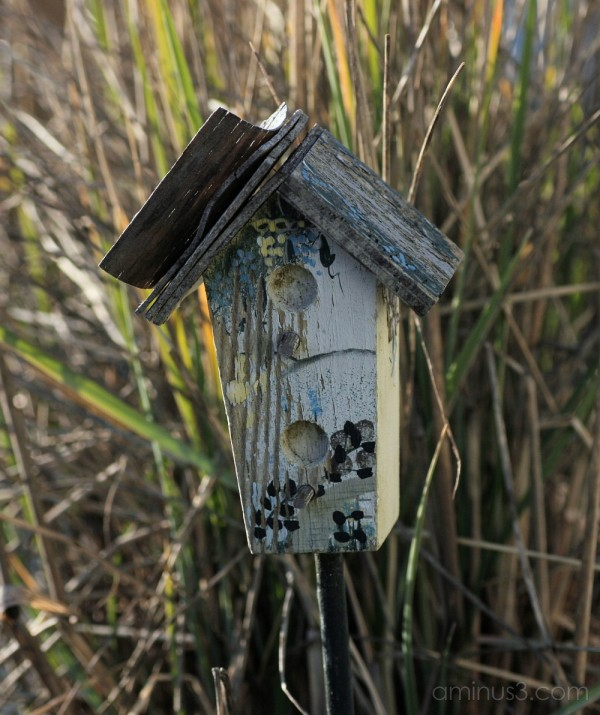 Weathered birdhouse