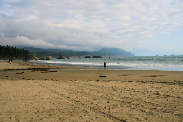 Walking the beach