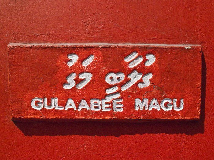 Gulaabee Magu