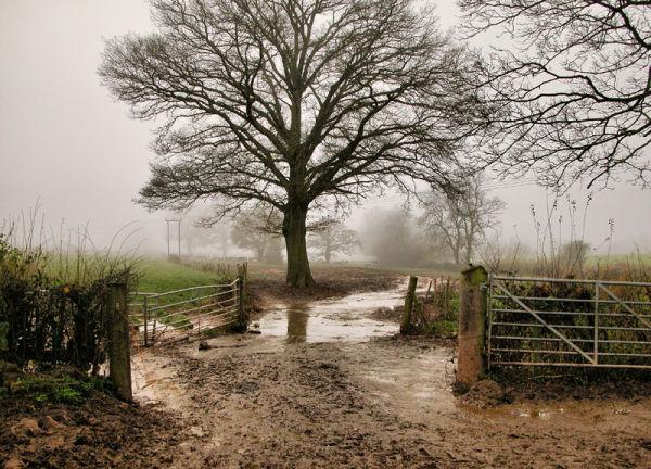 Tinker's Hill Ludlow Shropshire UK