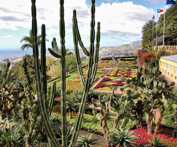 Botanic Gardens Funchal Madeira