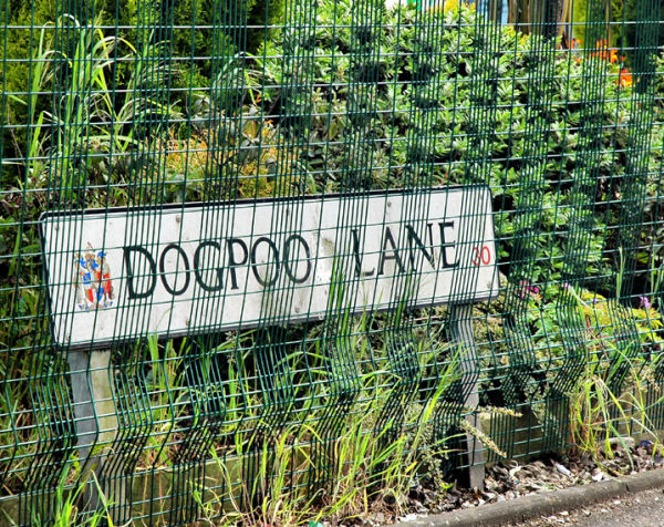 Dogpool lane Birmingham UK