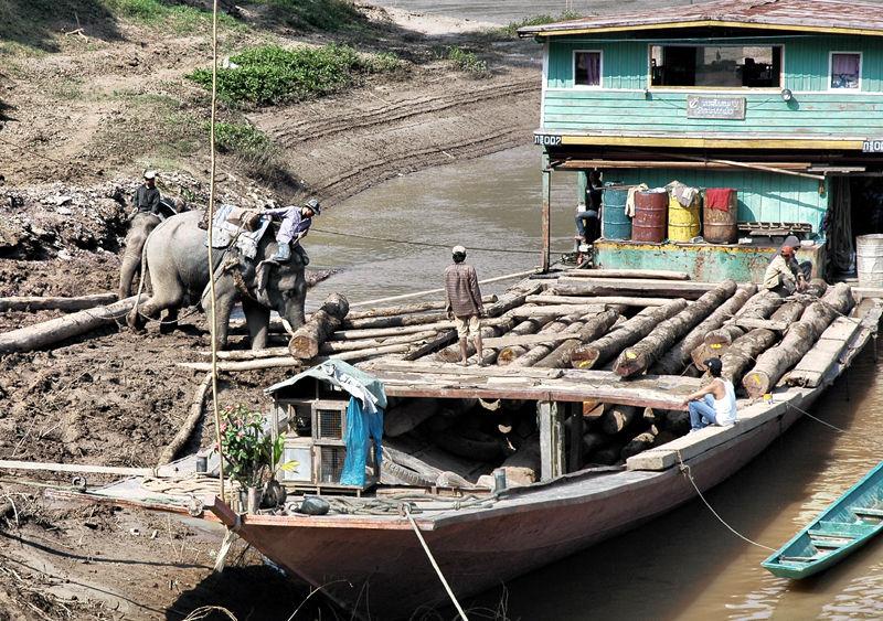 Elephant Teak Barge Mekong Laos