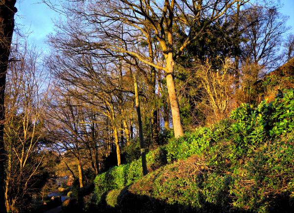 Ludlow Steventon Shropshire UK