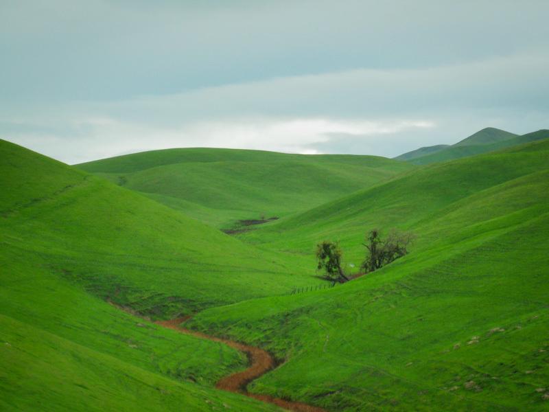 Green Rolling Hills 3817 - Landscape & Rural Photos - Jim ...