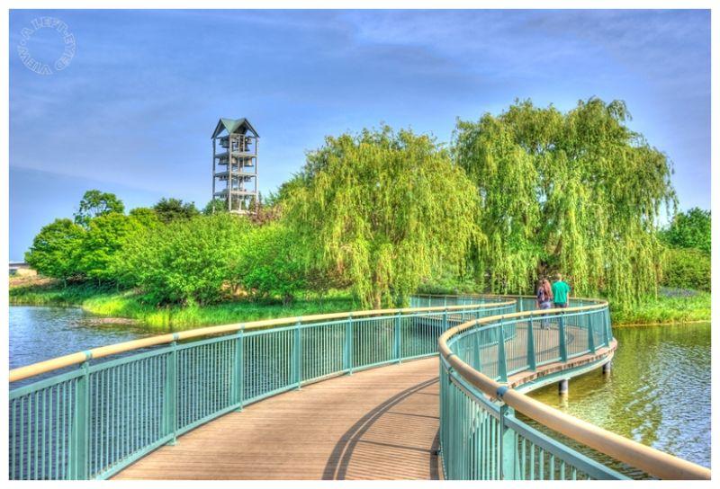 """Evening Island"", ""Chicago Botanic Gardens"""