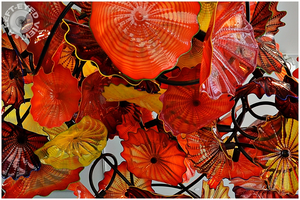 """Dale Chihuly"""