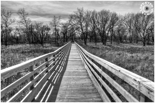 """A Left-Eyed View"", Sabourin, Bridge"