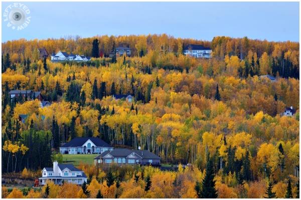 Sabourin, Fairbanks, Autumn