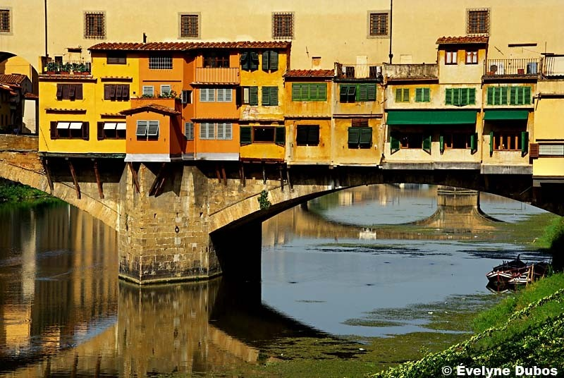 Colors of Tuscany  (Italy)