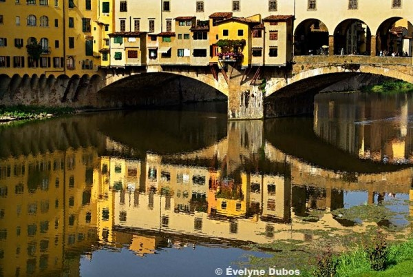 Colors of Tuscany  (3)  -Italy-