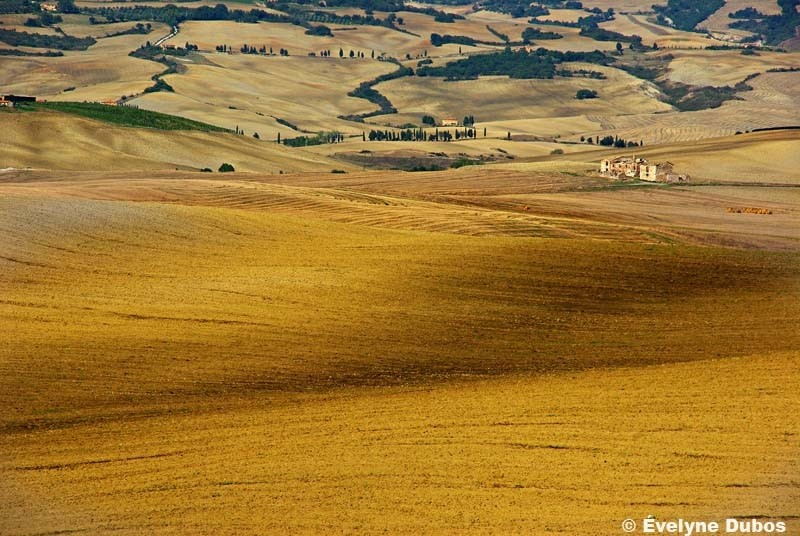 Colors of Tuscany  (4)  -Italy-