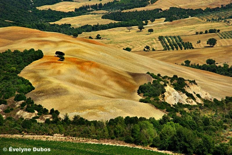 Colors of Tuscany  (5)  -Italy-
