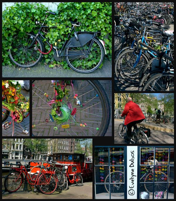 Le vélo dans tous ses états -1- (Amsterdam)