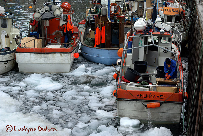 ... y'a des marins qui bossent.  (Greenland)