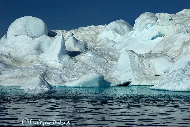 Les géants de glace (1)  - Groenland -