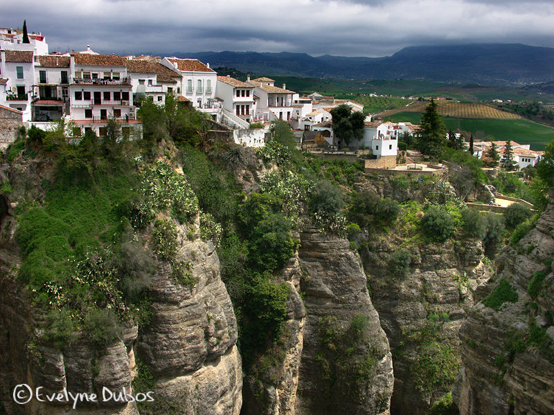 White villages of Andalusia  -3-  (Spain)