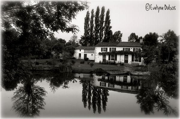 La petite maison du marais. (2)