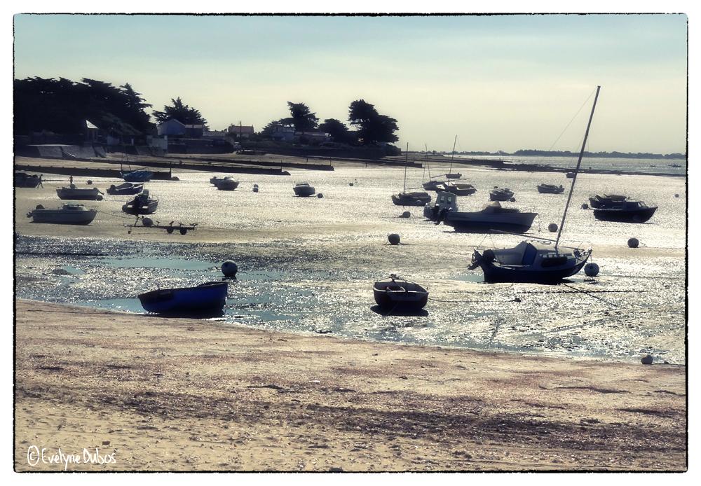 Un dimanche à la mer (3)