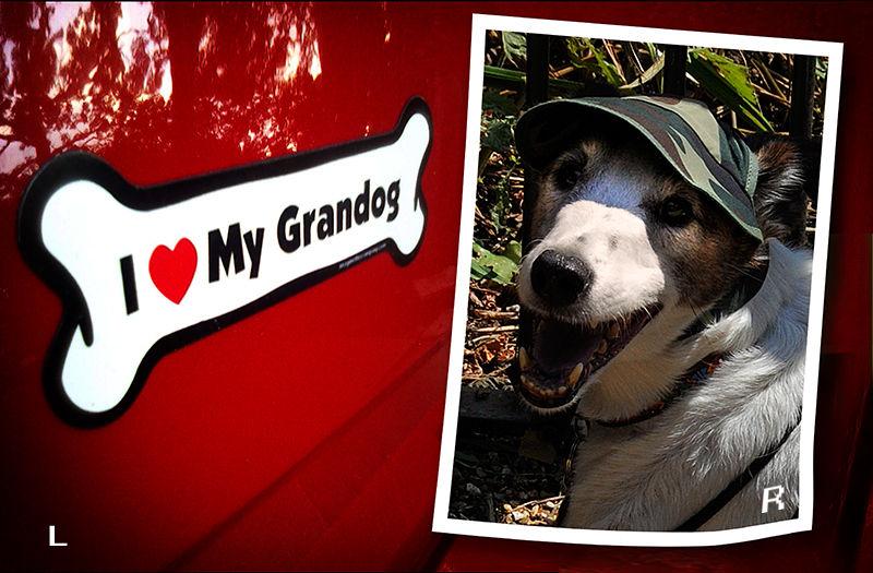 Grandog