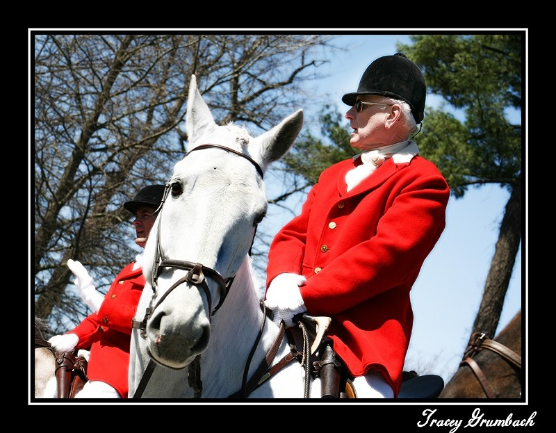 a mounted fox hunter dressed in his pinks
