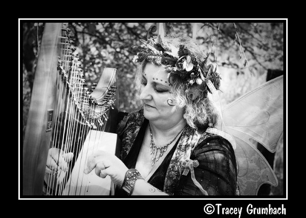 woman dressed as fairy playing harp