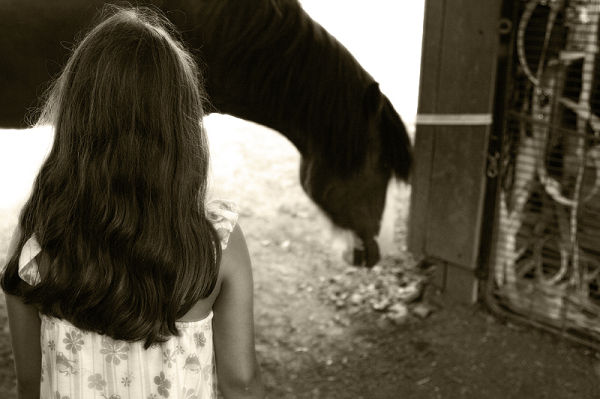 girl looking at Clydesdale horse
