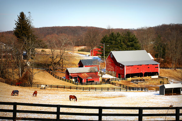 landscape of rural farm