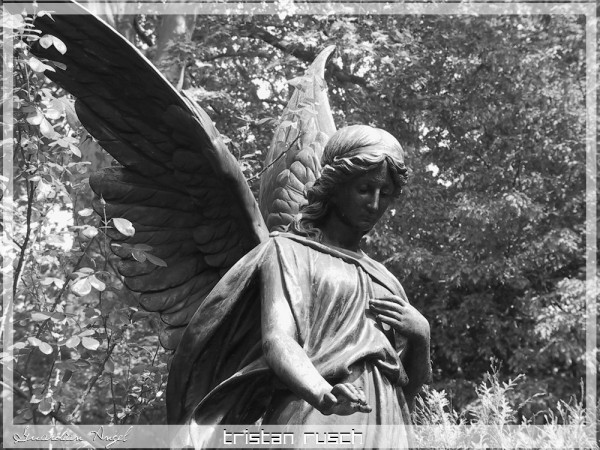 A Statue of a Guardian Angel