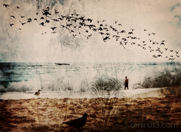 Contemplation photomontage