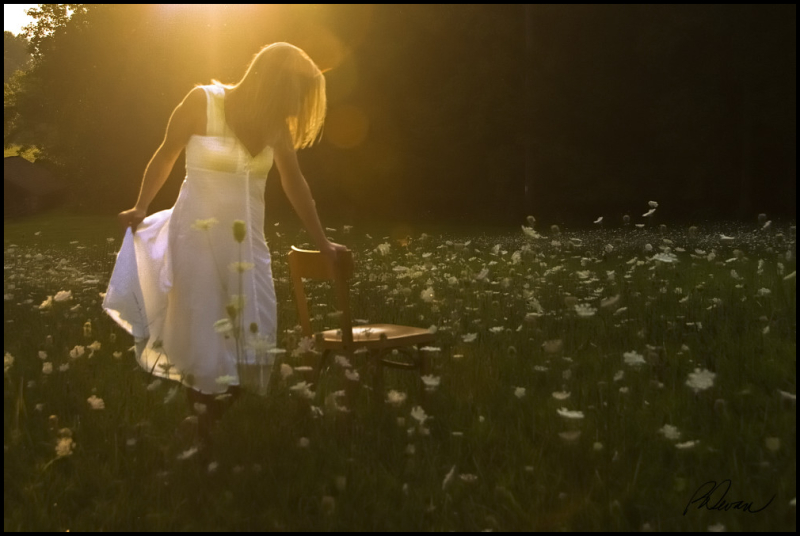 woman in white dress in field of white flowers