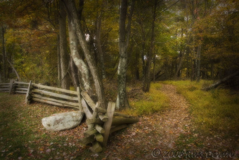 Wooded path and fence, Shenandoah National Park