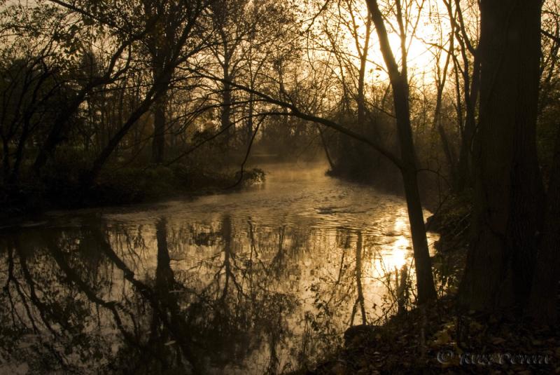 Dawn, Swamp Creek, New Hanover