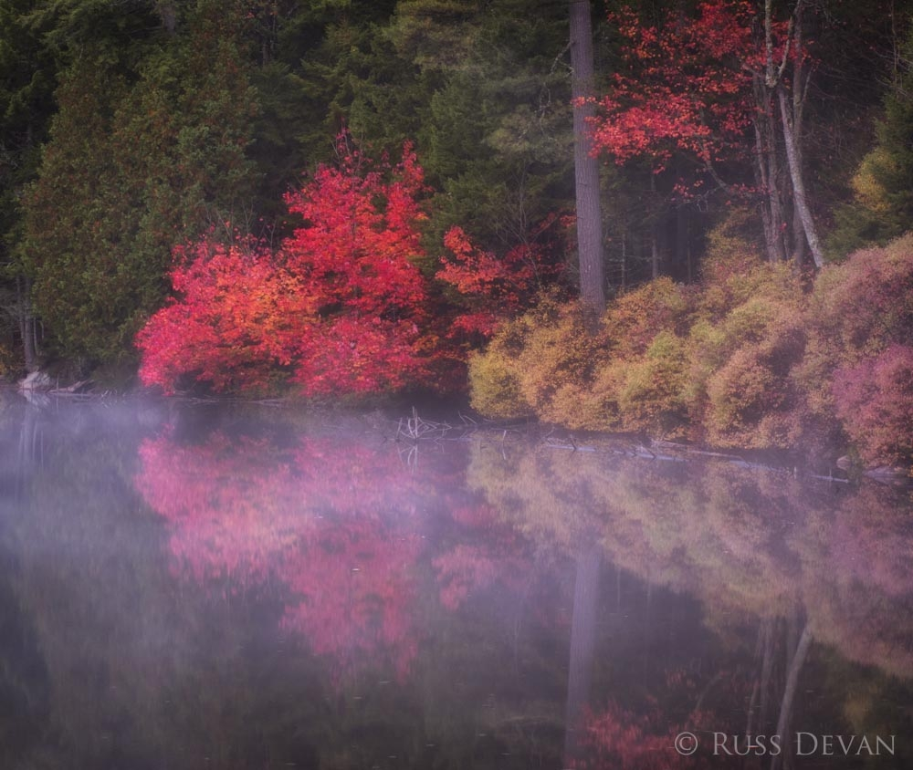 Autumn foliage reflected in foggy Adirondack lake