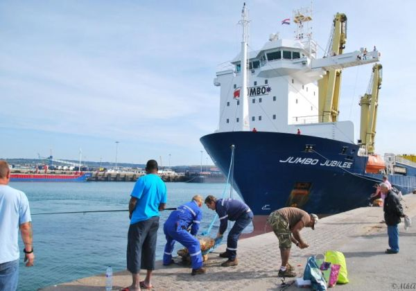 Port de Cherbourg-Octeville 3
