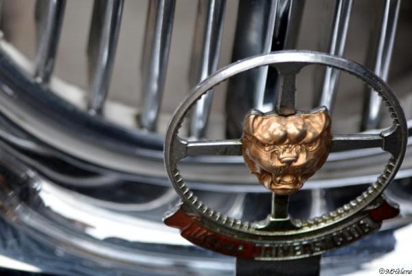 Jaguar Drivers Club